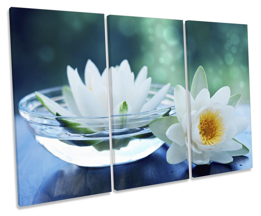 Bathroom Water Lilies Floral-TR32
