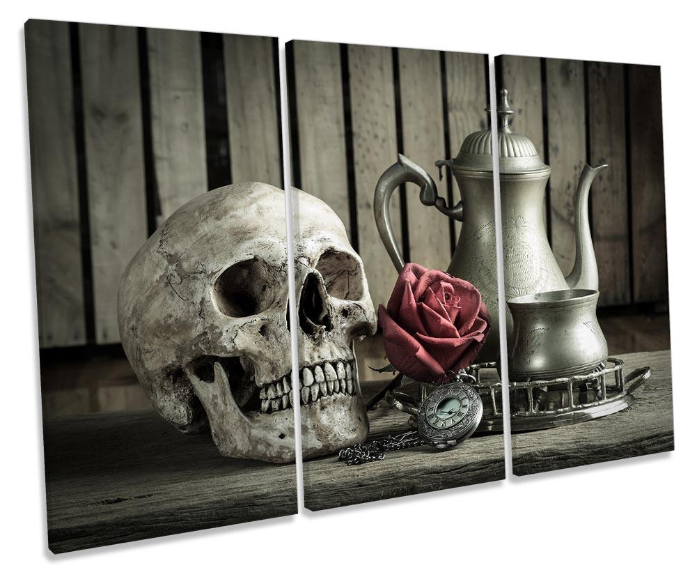 Skull Kitchen Still Life-TR32