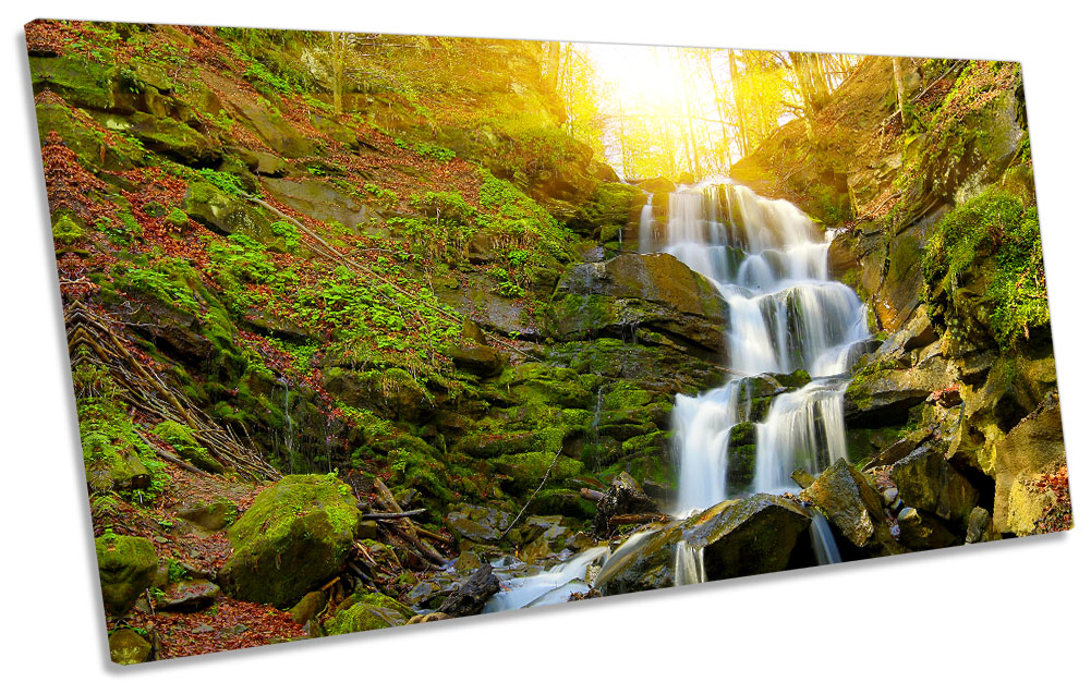 Enchanted Forest Sunset CANVAS ART Print Panoramic Picture
